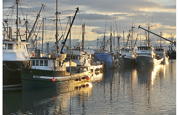 Vancouver fishing boats Peak Your Interest